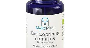 mykoplus bio coprinus vitalpilz kapseln 30 stueck 310x165 - MykoPlus Bio Coprinus Vitalpilz-Kapseln 30 Stück