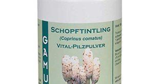 GAMU Schopftintling Bio Vital Pilzpulver 100g 310x165 - GAMU Schopftintling Bio Vital-Pilzpulver 100g